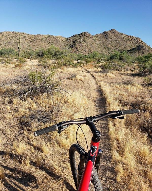 A quiet pause on a summertime mountain bike ride (Phoenix, AZ)